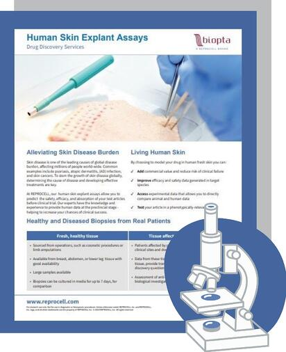 Human Skin Explants Brochure Thumnail for LP
