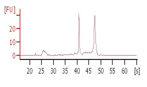 bioanalyzer-analysis-2-1