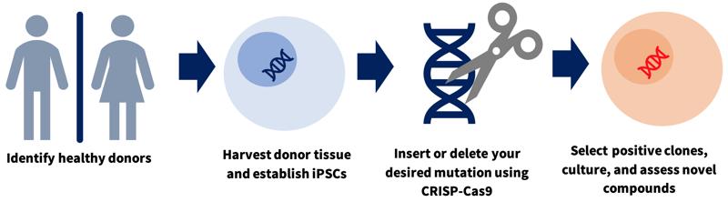 scs-gene-editing-01
